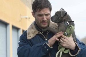 A picture of Tom Hardy holding an adorable pit bull puppy.